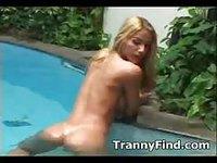Compilation de transsexuelles sexy