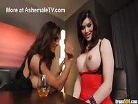 Big breasted tranny sluts reclaim the kitchen