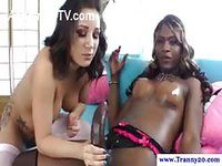 Ebony shemale babe with big black cock