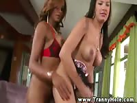 Cock hungry shemale girlfriends show off their dick sucking skills during this recent play session