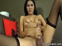 Asian shemale with a big dick loves masturbating it before going to sleep
